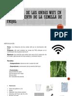 Influencia de Las Ondas Wifi en El Crecimiento