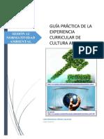 GUÍA_PRÁCTICA_N°12.