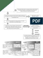 Guía Durkheim - Educación