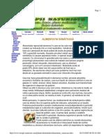 Alimentatie sanatoasa.pdf