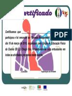 Certificado_Basquetebol_vencedores