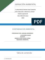 Contaminación Ambiental Ultima