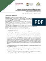 TdR MX65 Corredor Jaguar- Rancho Modelo Convocatoria 05-09-19