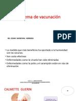 Vacunas Actual