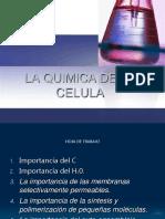 Biomoleculas I 2
