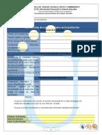 Formato de Entrega Fase 1-1