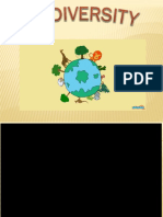 biodiv 2