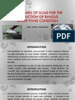 bangus production