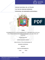 Canllahui_Mamani_Marina.pdf