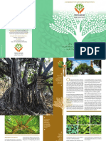 Sustainable Reforestation Booklet-01_22 Feb_2019