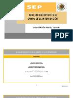 auxiliar-educativo-1.pdf