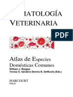 Hematologia Veterinaria Atlas