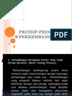 Prinsip-prinsip Perkembangan Danish