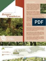 Guía Bosques Def