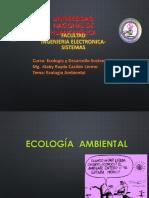 Diapositiva 5 - Ecologia y Megadiversidad Del Peru