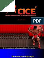 Mecanismo de La Hipertrofia Jorge Fernandez