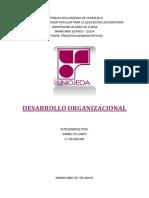 Desarrollo Organizacional y Estructura Paralela (4)