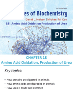 6. Ch18_Amino Acid Oxidation Production of Urea