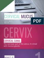 Cervical Mucus (XU)