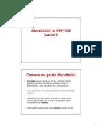 Curs 1 Aminoacizi Si Peptide
