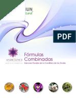 11 Archivo-Formulas Combinadas