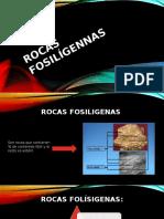 Rocas Fosilígennas