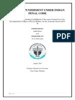 pUNISHMENT ipc 1.docx