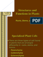 Plant Form and Function