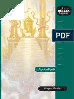 APOCALIPSIS-BibliaPopular41-Apocalipsis.pdf