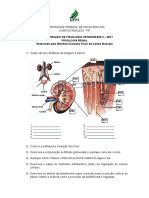 Estudo Dirigio Fisiologia Renal (1)