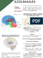 Apuntes neuro