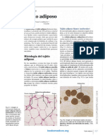 Cap 9 Adiposo.pdf