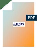 AGNOSIAS0.pdf