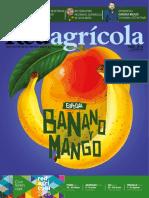 Banano y Mango 52