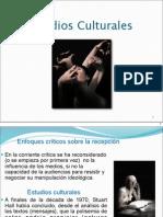 estudios culturales diapositivas