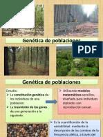 11. Genetica de Poblaciones (1)