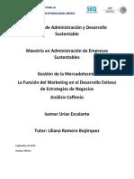 Gestion de Marketing, Analisis Caffenio.