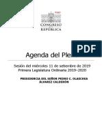 Agenda pleno 11.09.2019