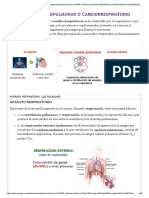pulmonar