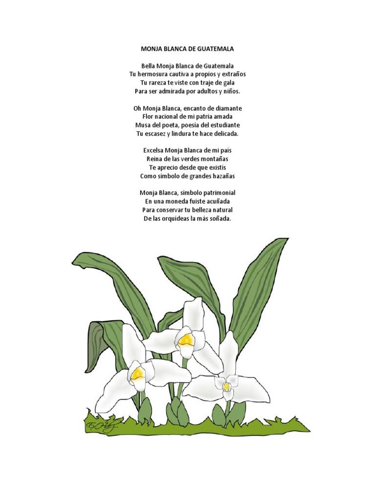 Poemas A Los Simbolos Patrios Guatemala Entretenimiento General
