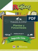 script-tmp-inta_-_ficha_docente_plantas_y_fotosintesis.pdf