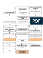 Patofisiologi Anemia