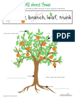 trees-worksheet.pdf