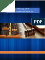 Teoria-Del-Caso-en-materia-civil.docx