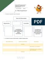 Guía de Repaso Microorganismos