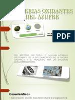 bacterias oxidantes del azufre.pptx