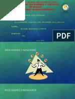 El Planeamiento Financiero Como Instrumento