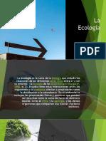 Ecologia Multimedia