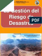 GESTION DEL RIESGO.pptx
