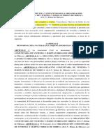 Acta Constitutiva Brisas de Mireya